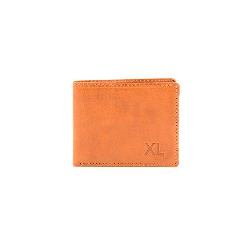 XC1WPL00B1329